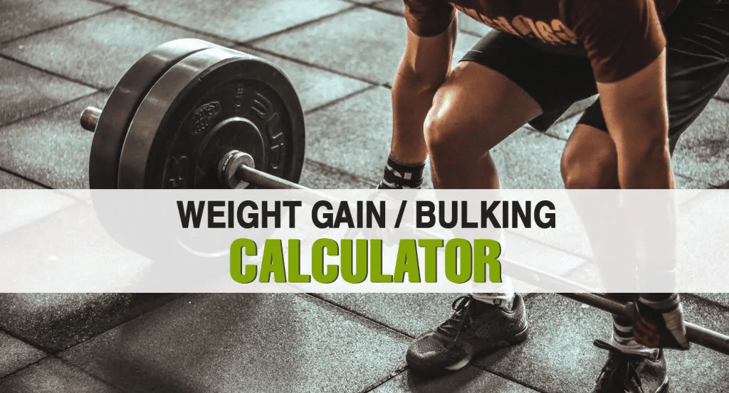 weight gain calculator
